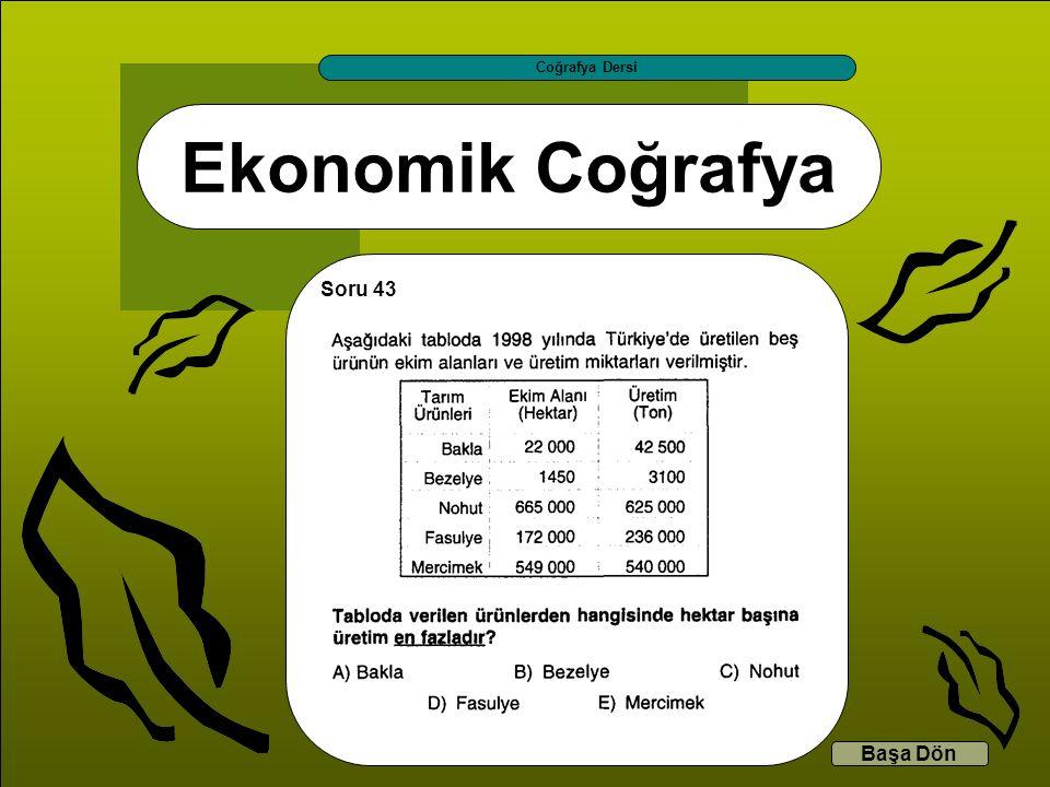 Coğrafya Dersi Ekonomik Coğrafya Soru 43 Başa Dön