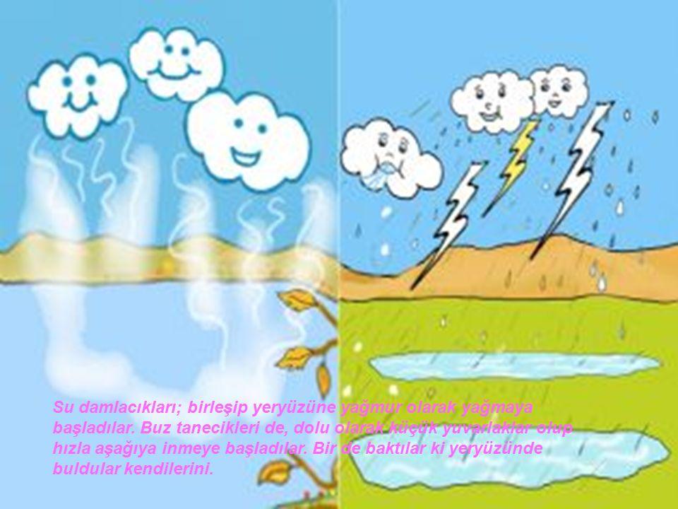 Su damlacıkları; birleşip yeryüzüne yağmur olarak yağmaya başladılar