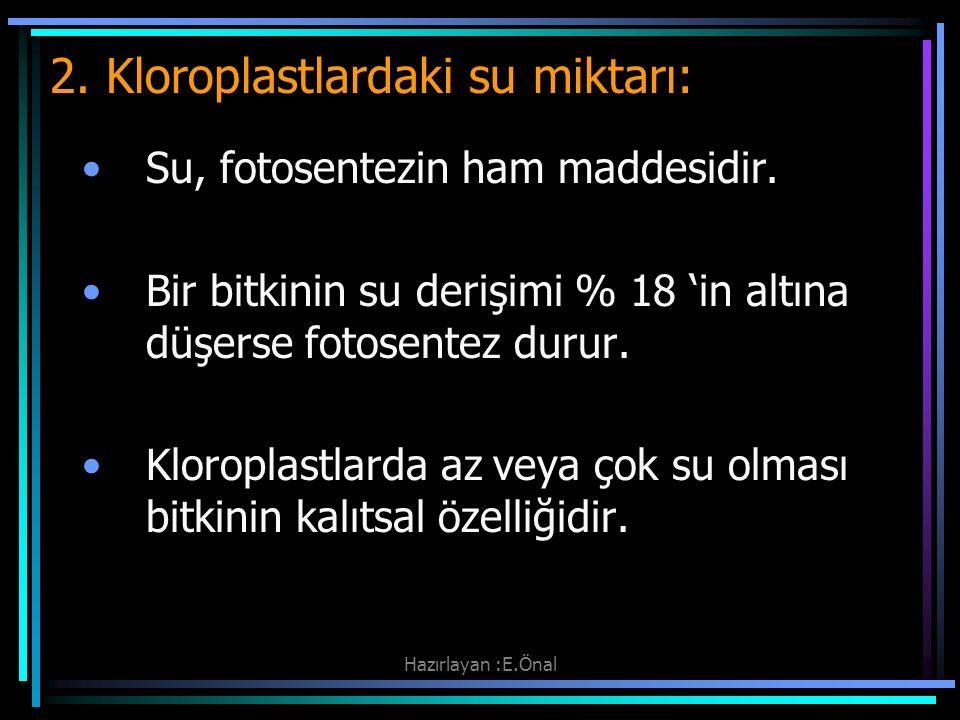 2. Kloroplastlardaki su miktarı: