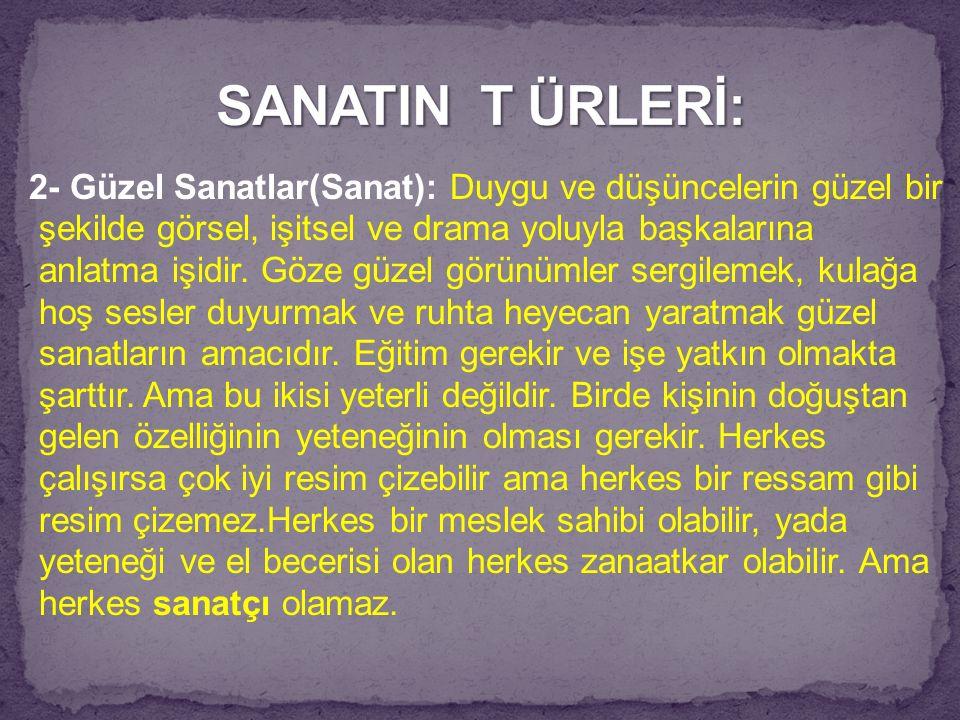 SANATIN T ÜRLERİ: