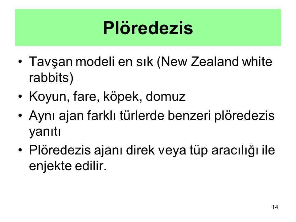 Plöredezis Tavşan modeli en sık (New Zealand white rabbits)