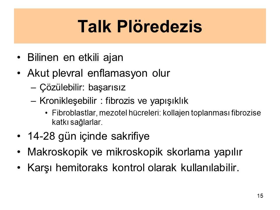 Talk Plöredezis Bilinen en etkili ajan Akut plevral enflamasyon olur