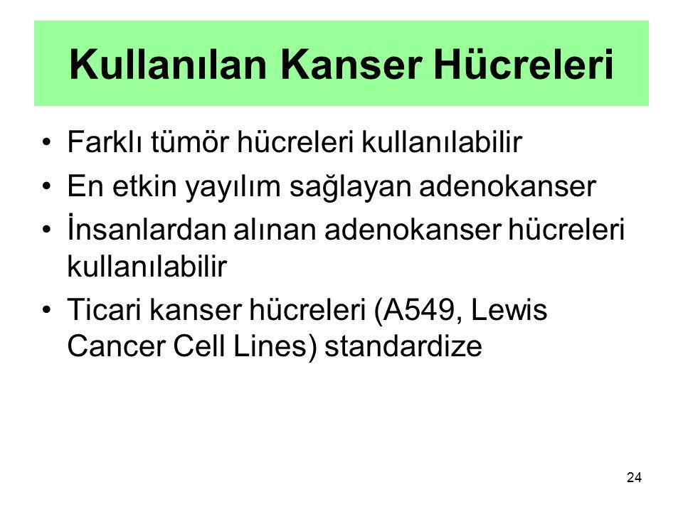 Kullanılan Kanser Hücreleri