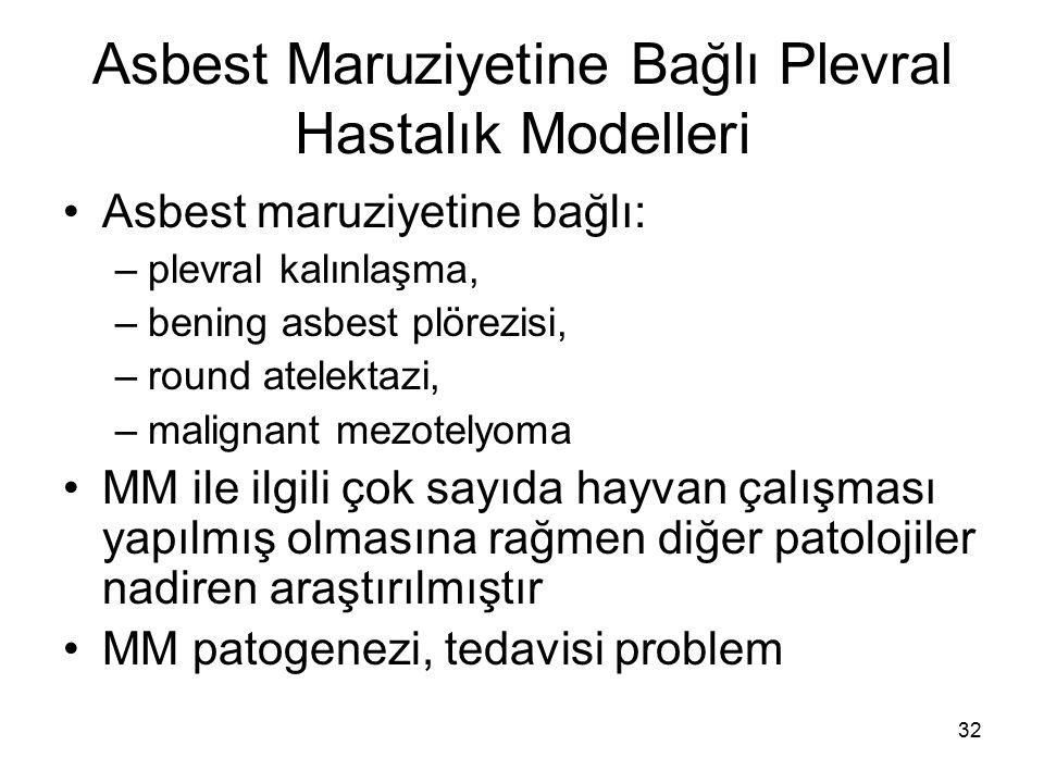 Asbest Maruziyetine Bağlı Plevral Hastalık Modelleri