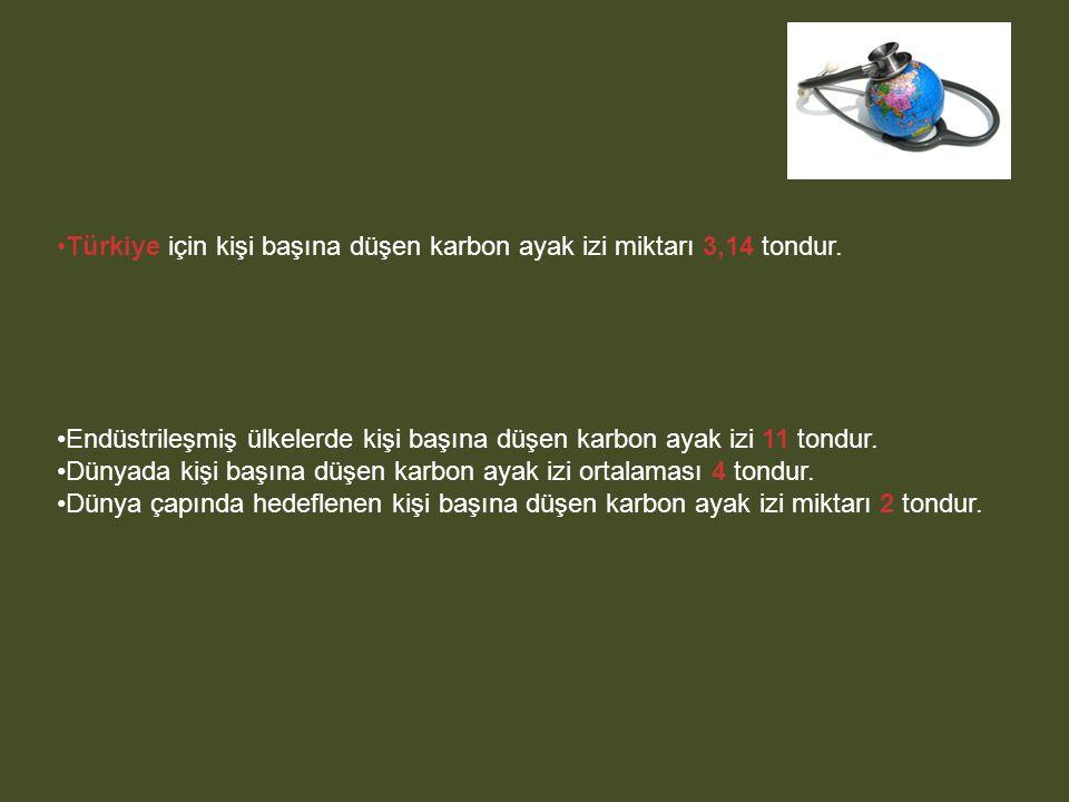 Türkiye için kişi başına düşen karbon ayak izi miktarı 3,14 tondur.