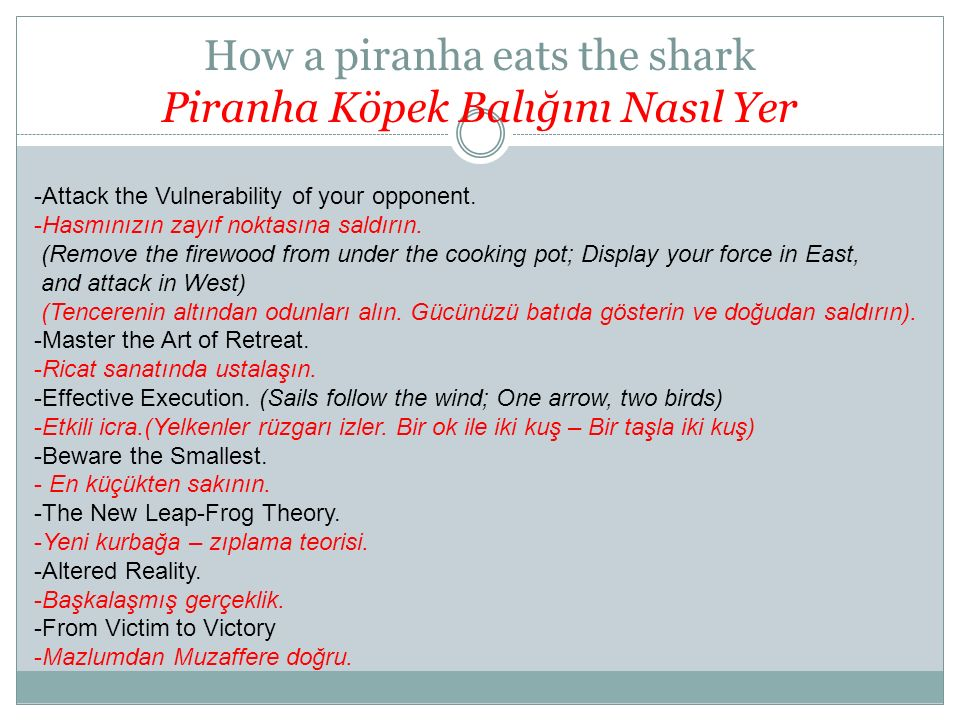 How a piranha eats the shark Piranha Köpek Balığını Nasıl Yer