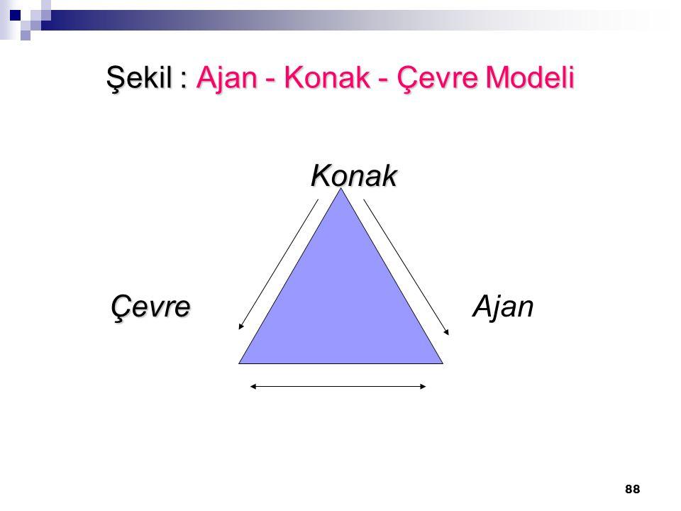 Şekil : Ajan - Konak - Çevre Modeli