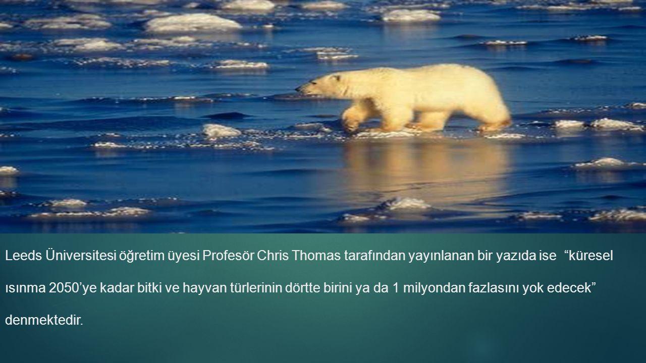 Leeds Üniversitesi öğretim üyesi Profesör Chris Thomas tarafından yayınlanan bir yazıda ise küresel ısınma 2050'ye kadar bitki ve hayvan türlerinin dörtte birini ya da 1 milyondan fazlasını yok edecek denmektedir.
