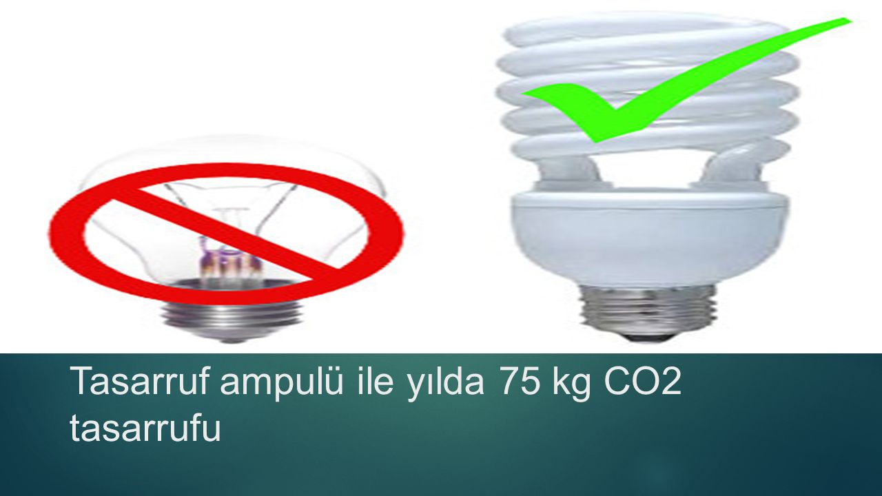 Tasarruf ampulü ile yılda 75 kg CO2 tasarrufu