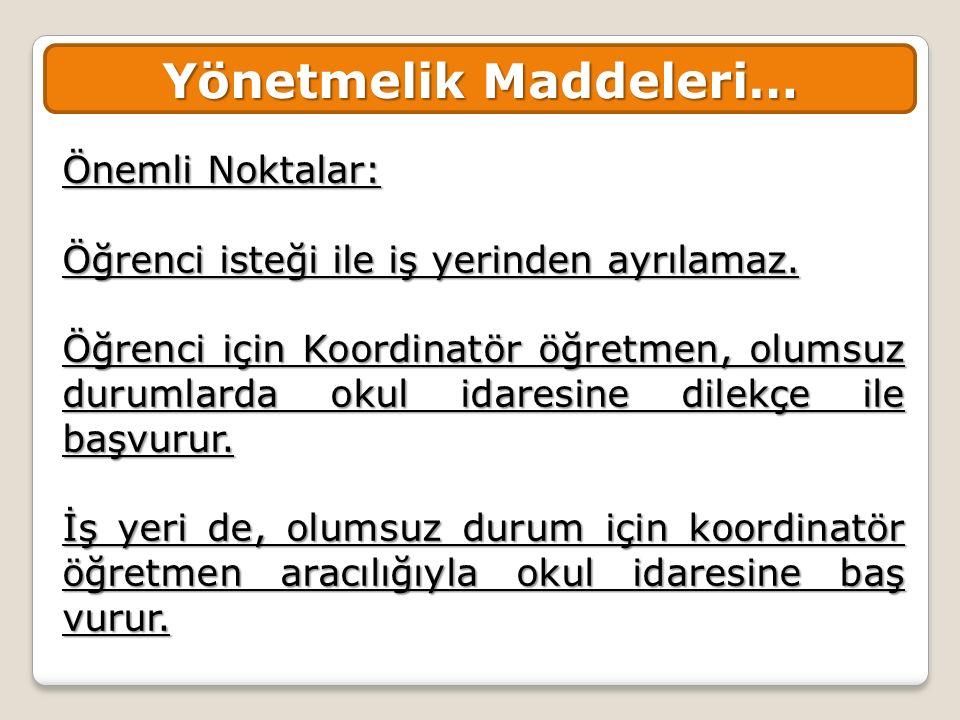 Yönetmelik Maddeleri…