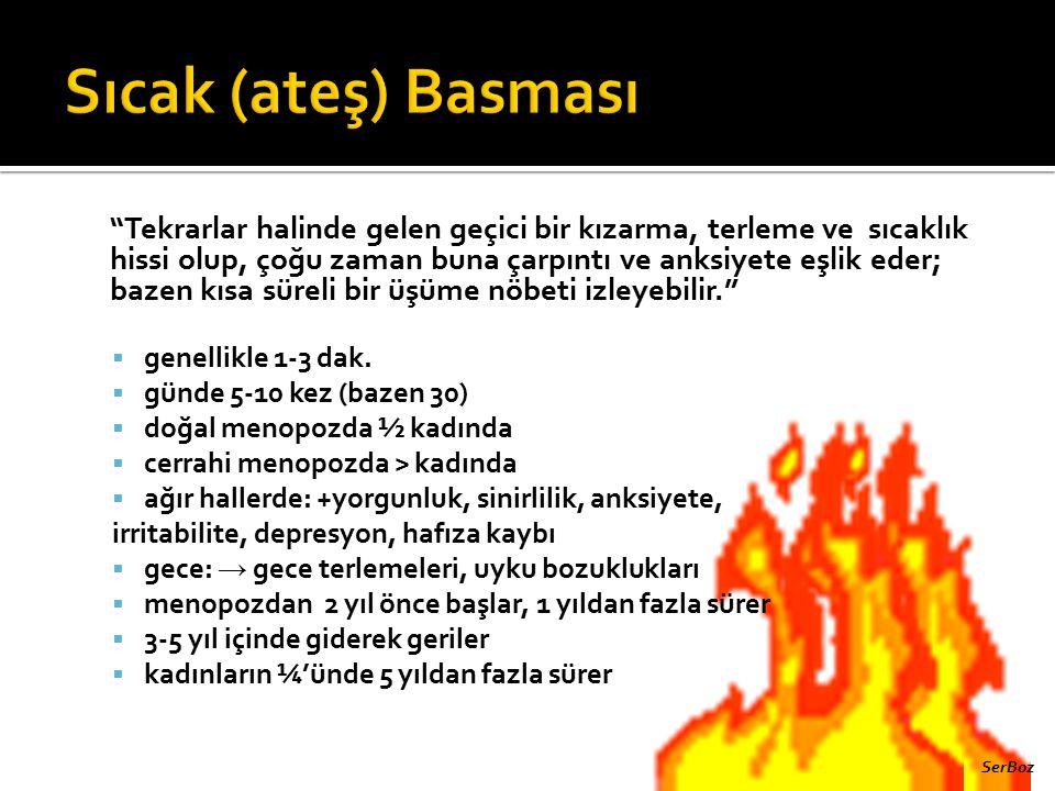 Sıcak (ateş) Basması