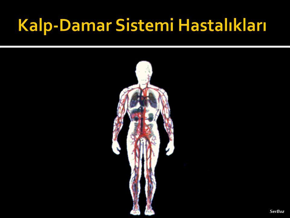 Kalp-Damar Sistemi Hastalıkları
