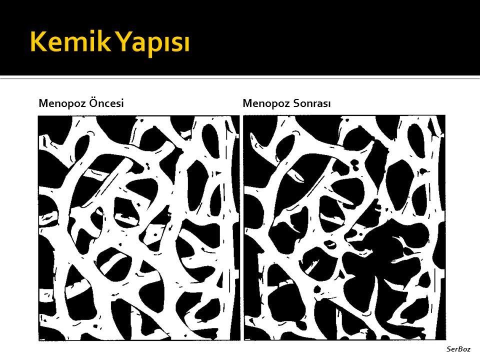 Kemik Yapısı Menopoz Öncesi Menopoz Sonrası SerBoz