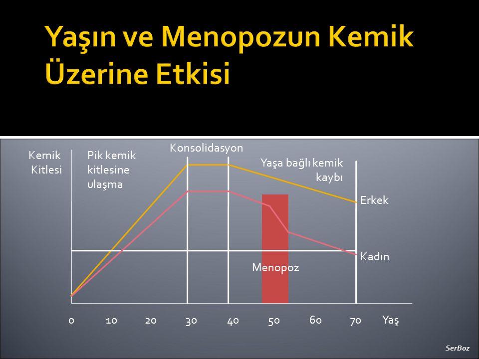 Yaşın ve Menopozun Kemik Üzerine Etkisi