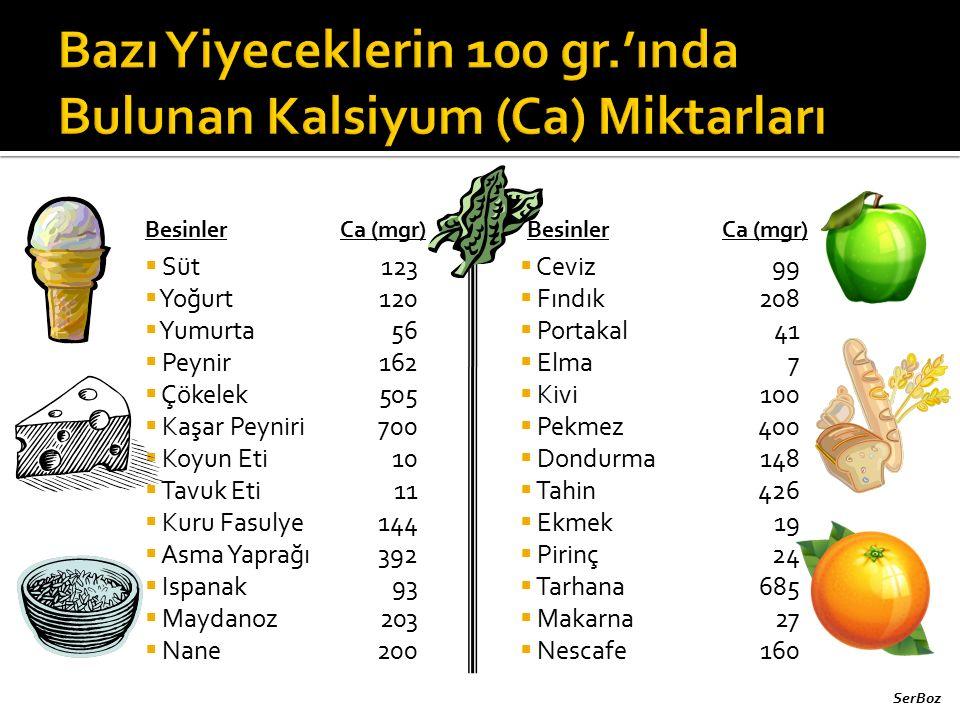 Bazı Yiyeceklerin 100 gr.'ında Bulunan Kalsiyum (Ca) Miktarları