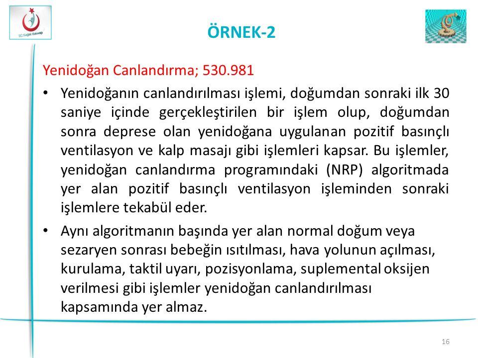 ÖRNEK-2 Yenidoğan Canlandırma; 530.981