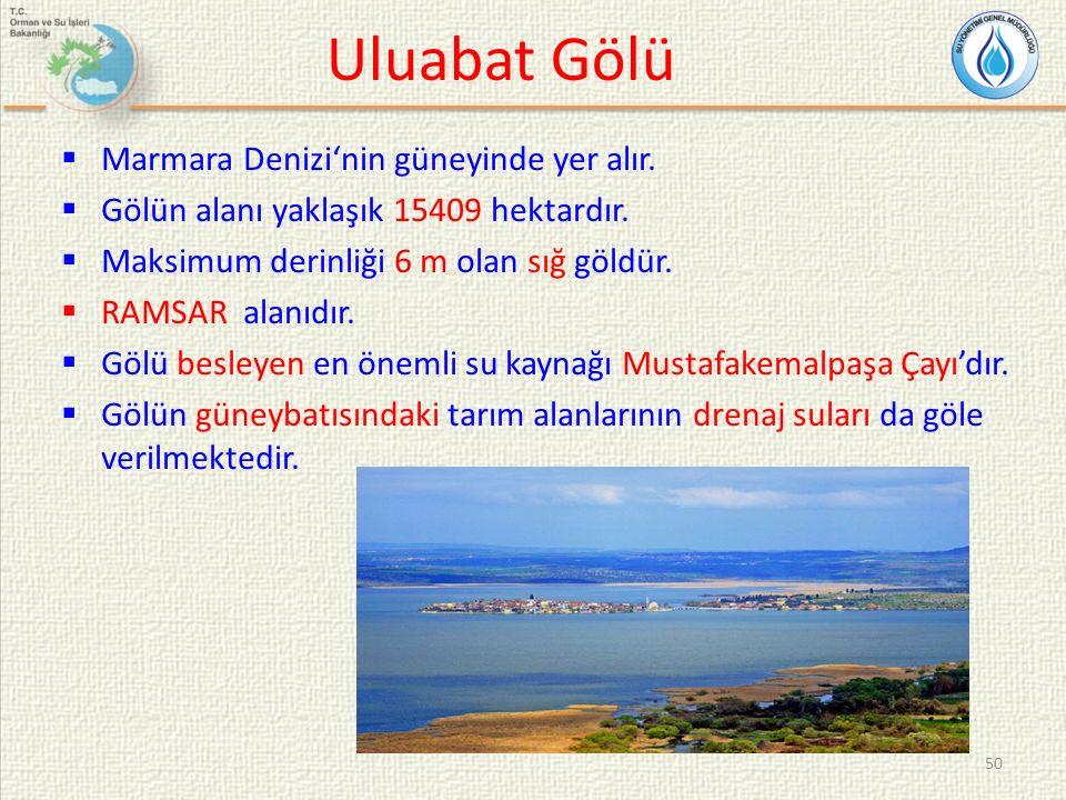 Uluabat Gölü Marmara Denizi'nin güneyinde yer alır.