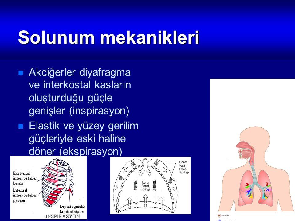 Solunum mekanikleri Akciğerler diyafragma ve interkostal kasların oluşturduğu güçle genişler (inspirasyon)
