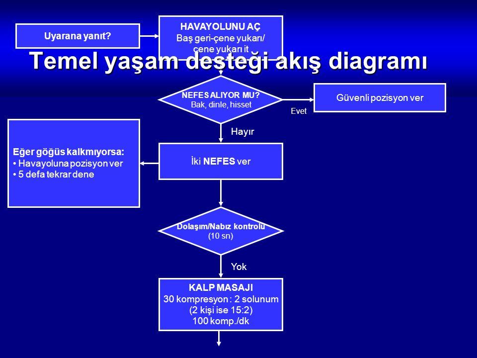 Temel yaşam desteği akış diagramı