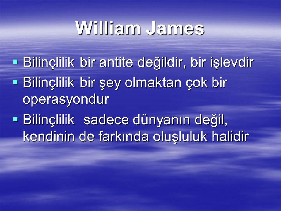 William James Bilinçlilik bir antite değildir, bir işlevdir