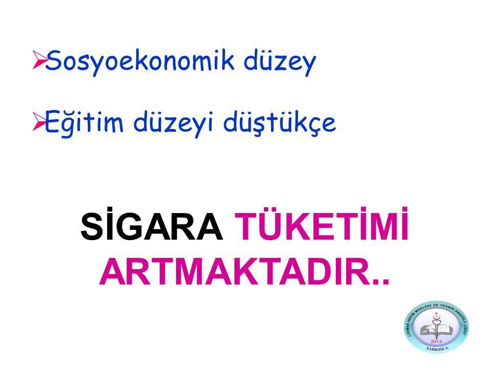 SİGARA TÜKETİMİ ARTMAKTADIR..