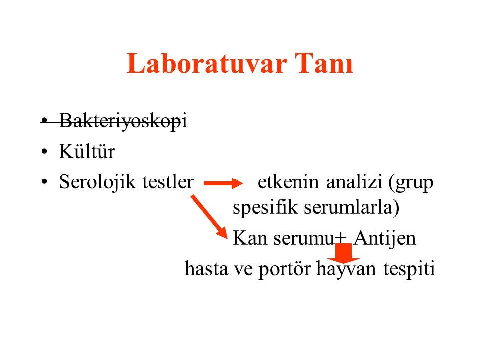 Laboratuvar Tanı Bakteriyoskopi Kültür