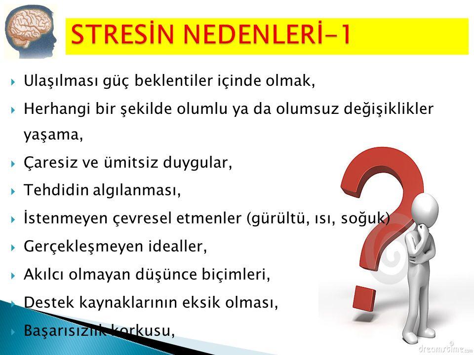 STRESİN NEDENLERİ-1 Ulaşılması güç beklentiler içinde olmak,