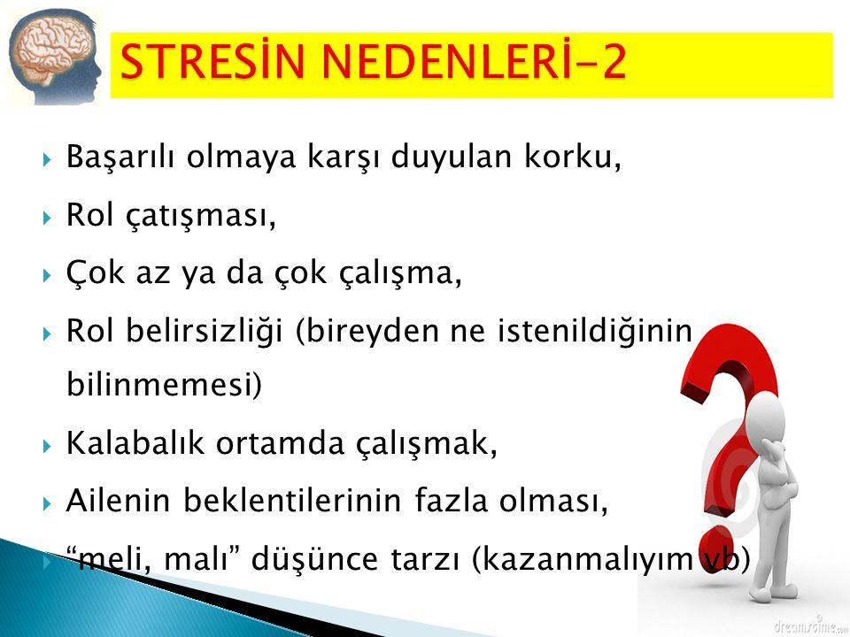 STRESİN NEDENLERİ-2 Başarılı olmaya karşı duyulan korku,