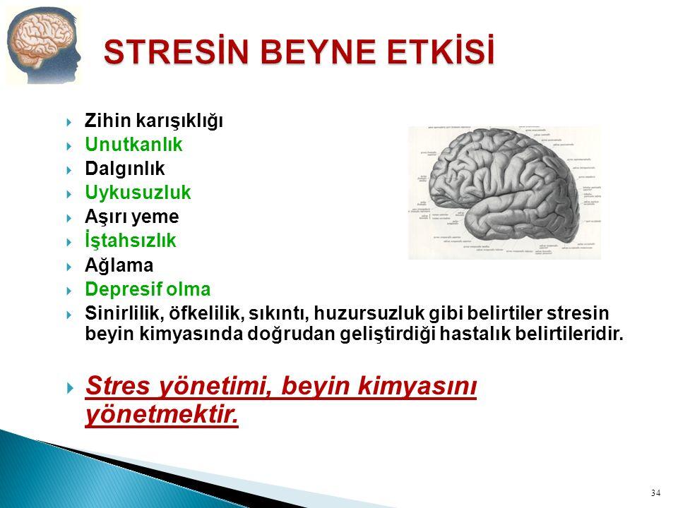 STRESİN BEYNE ETKİSİ Stres yönetimi, beyin kimyasını yönetmektir.