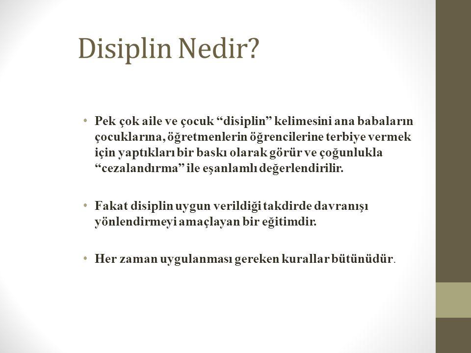 Disiplin Nedir