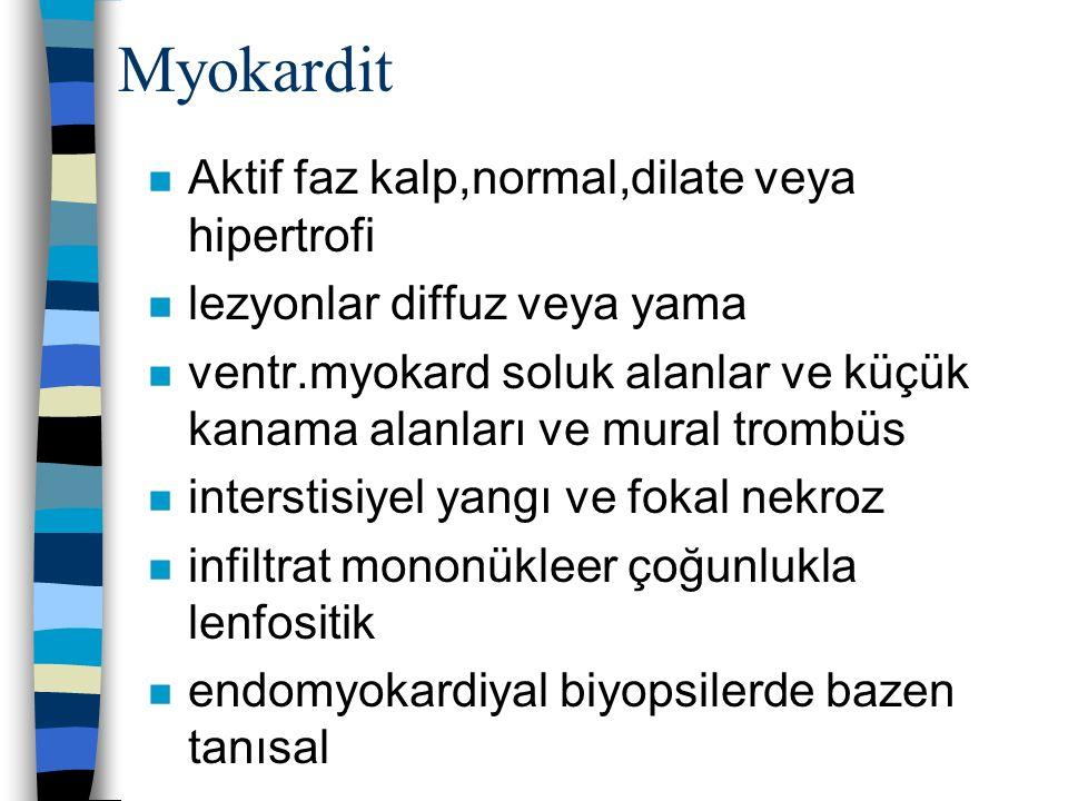 Myokardit Aktif faz kalp,normal,dilate veya hipertrofi