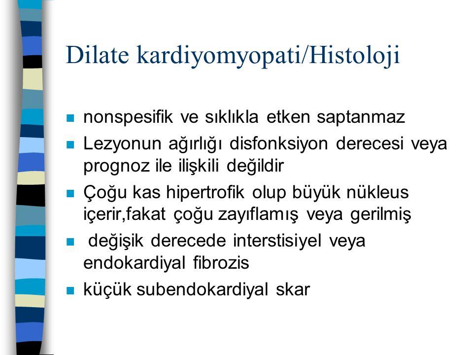 Dilate kardiyomyopati/Histoloji