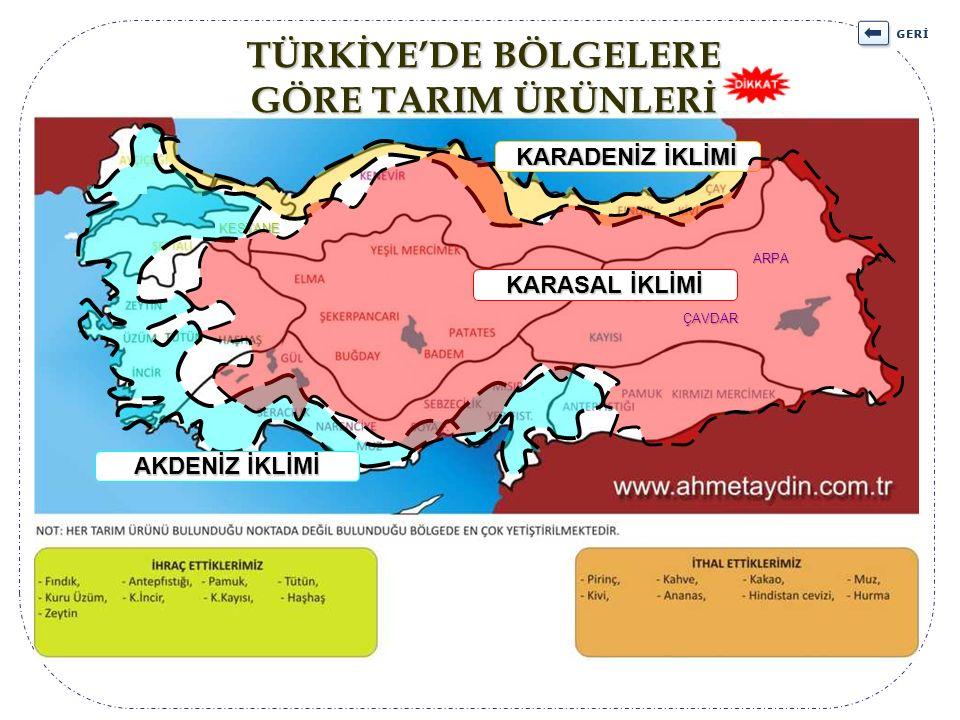 TÜRKİYE'DE BÖLGELERE GÖRE TARIM ÜRÜNLERİ