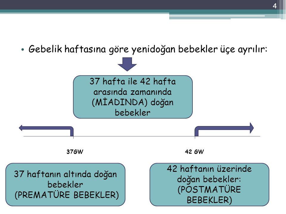 37GW 42 GW Gebelik haftasına göre yenidoğan bebekler üçe ayrılır: