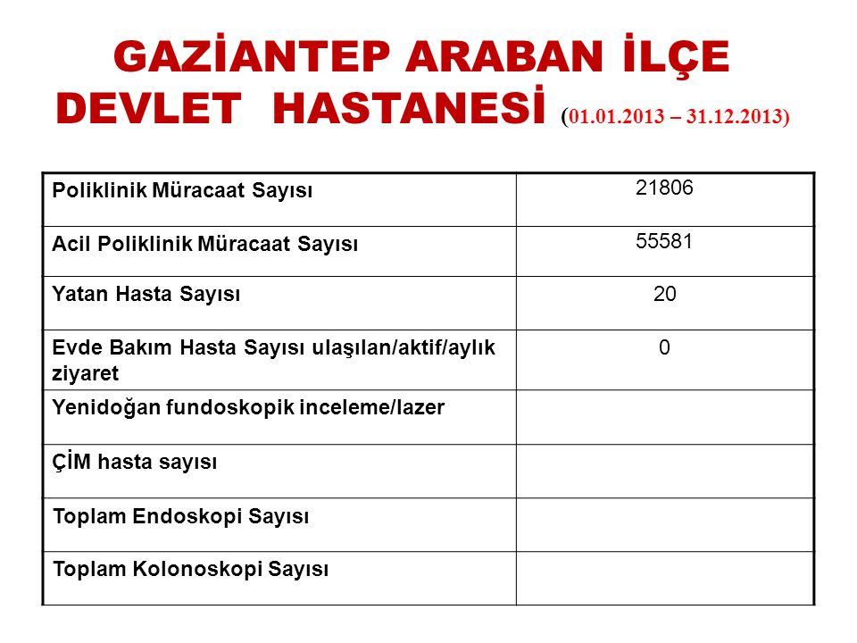 GAZİANTEP ARABAN İLÇE DEVLET HASTANESİ (01.01.2013 – 31.12.2013)