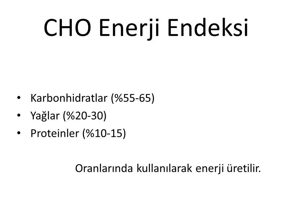 CHO Enerji Endeksi Karbonhidratlar (%55-65) Yağlar (%20-30)