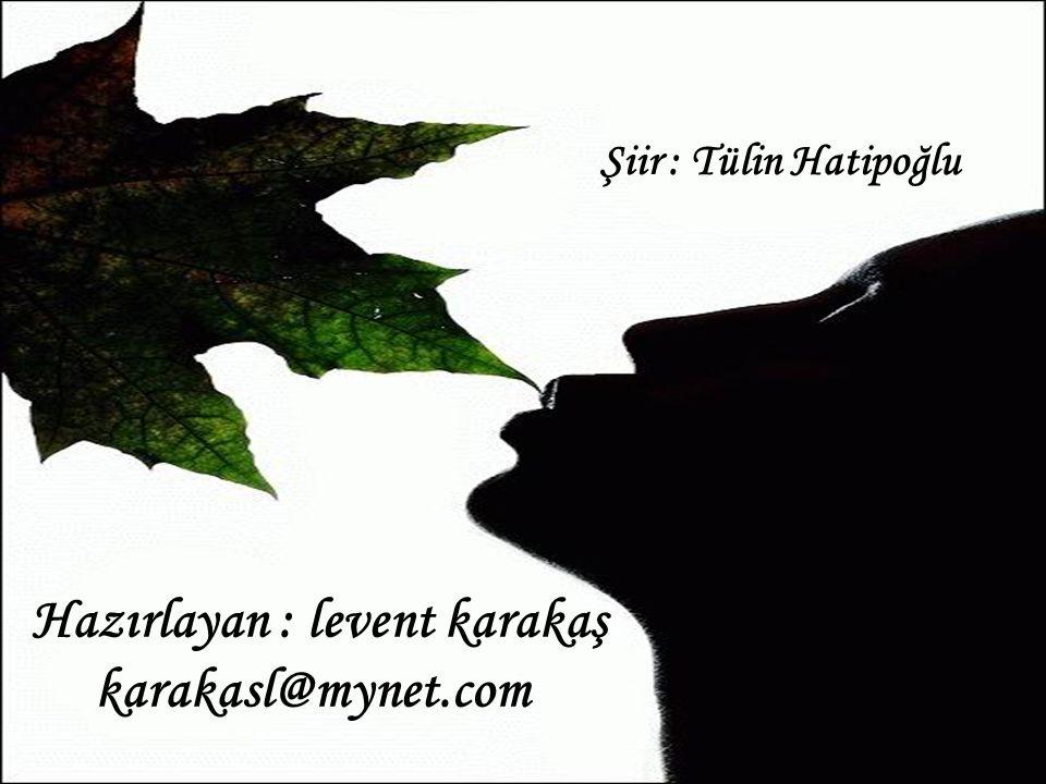 Hazırlayan : levent karakaş karakasl@mynet.com