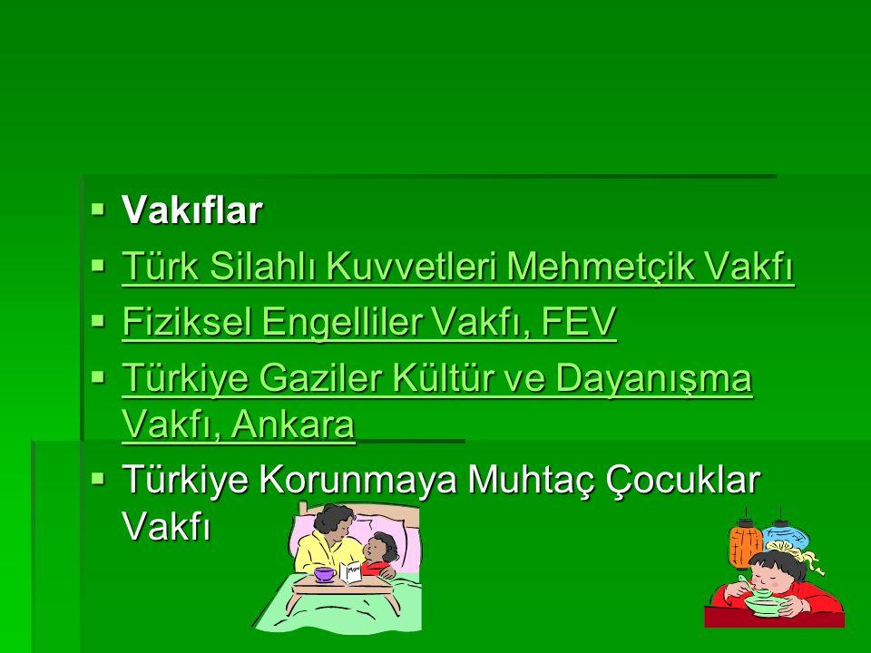 Türk Silahlı Kuvvetleri Mehmetçik Vakfı Fiziksel Engelliler Vakfı, FEV