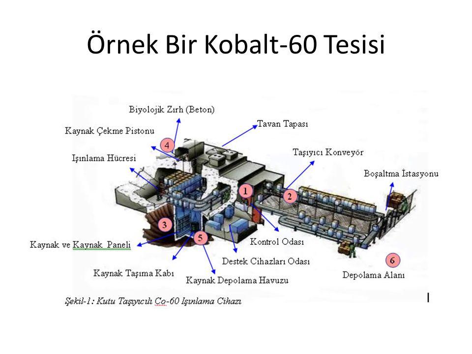 Örnek Bir Kobalt-60 Tesisi