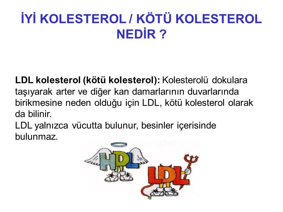 İYİ KOLESTEROL / KÖTÜ KOLESTEROL NEDİR