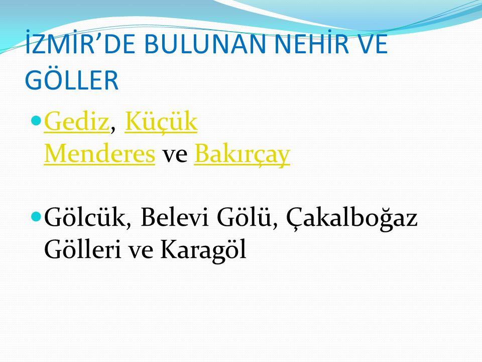 İZMİR'DE BULUNAN NEHİR VE GÖLLER