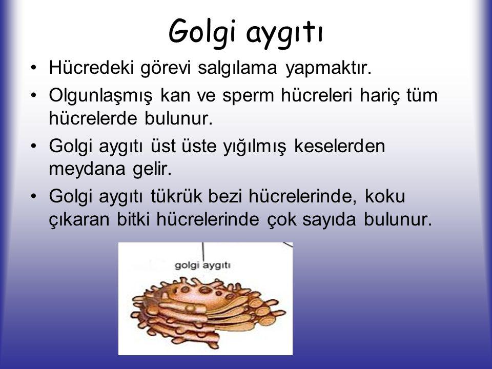 Golgi aygıtı Hücredeki görevi salgılama yapmaktır.