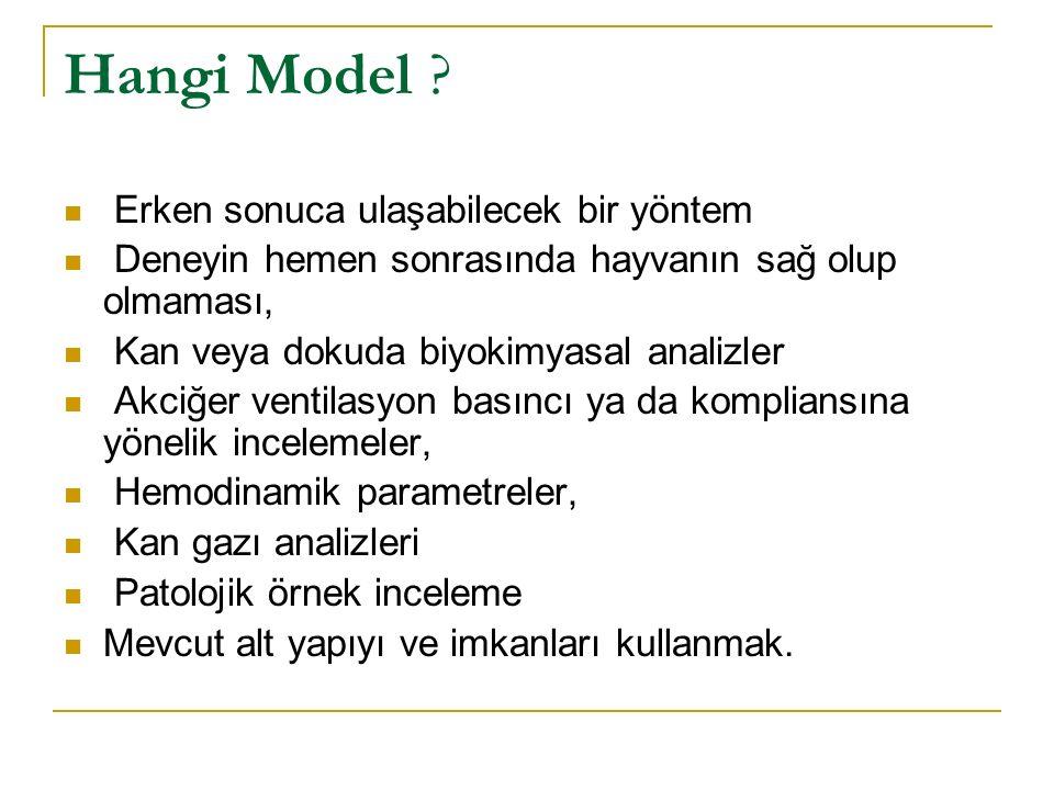 Hangi Model Erken sonuca ulaşabilecek bir yöntem