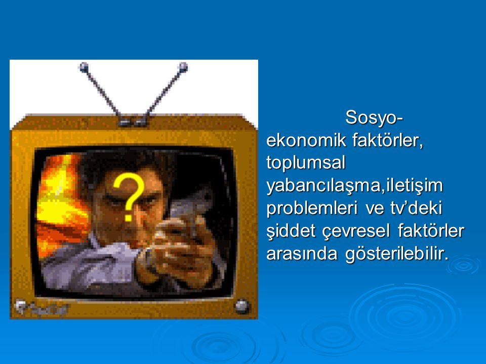 Sosyo-ekonomik faktörler, toplumsal yabancılaşma,iletişim problemleri ve tv'deki şiddet çevresel faktörler arasında gösterilebilir.
