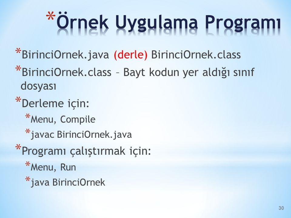 Örnek Uygulama Programı