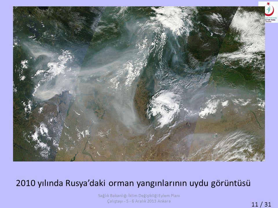 2010 yılında Rusya'daki orman yangınlarının uydu görüntüsü