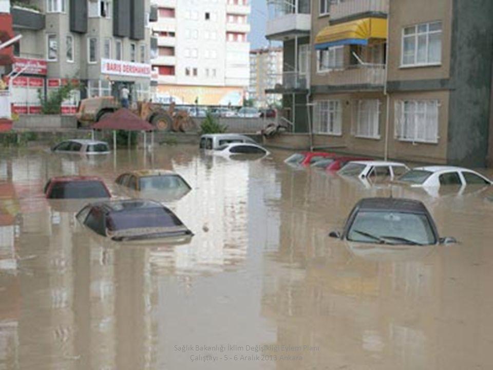 Sağlık Bakanlığı İklim Değişikliği Eylem Planı Çalıştayı - 5 - 6 Aralık 2013 Ankara
