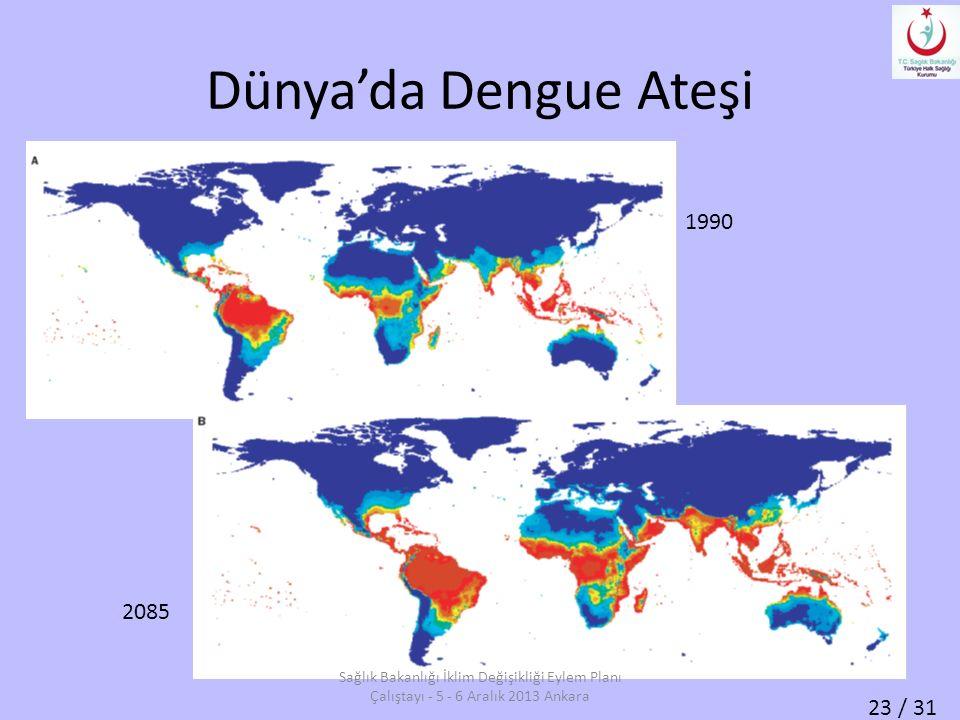 Dünya'da Dengue Ateşi 1990. 2085.