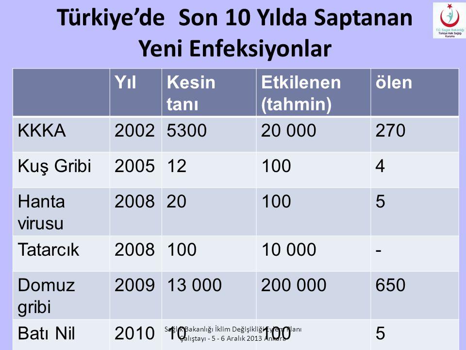 Türkiye'de Son 10 Yılda Saptanan Yeni Enfeksiyonlar