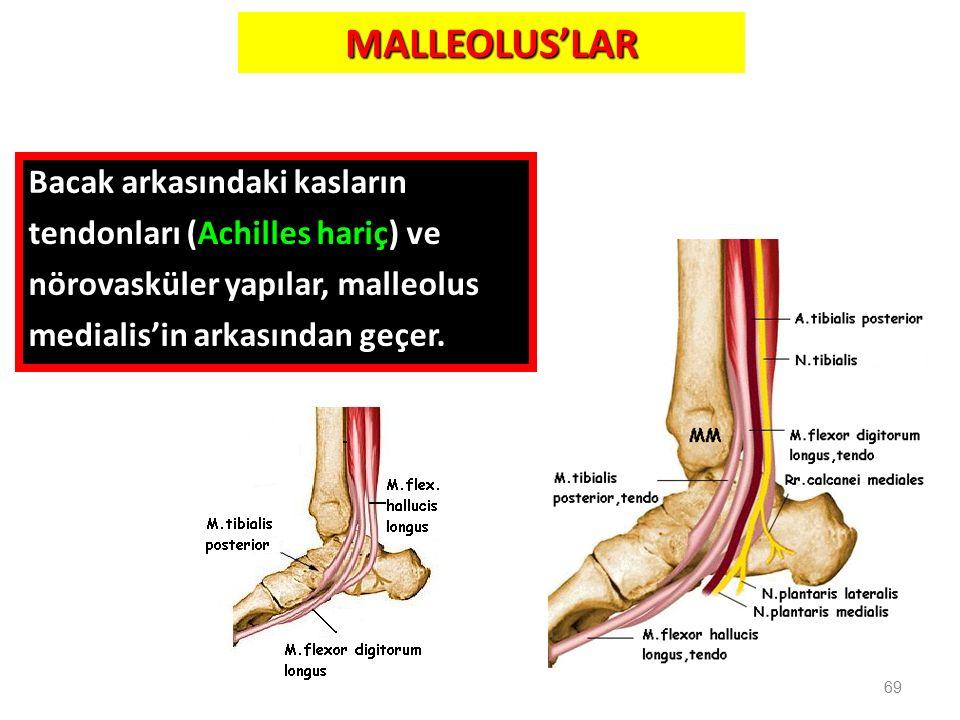 MALLEOLUS'LAR Bacak arkasındaki kasların